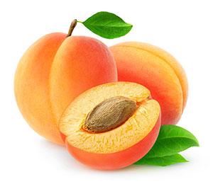 apricot-oil
