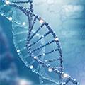 Varices y Arañas vasculares producidas por la genética