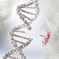 código genetico